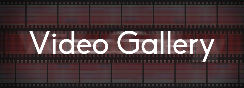 VideoGalleryImage